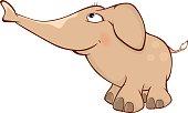 Cute elephant calf illustration. Cartoon