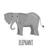 Cute Elephant in flat style.