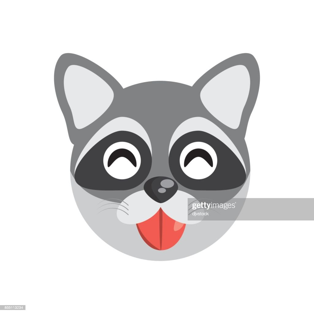 cute face raccoon animal cheerful