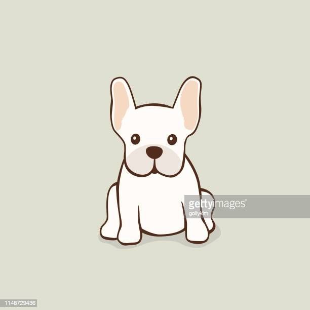 cute fawn french bulldog vector illustration - french bulldog stock illustrations