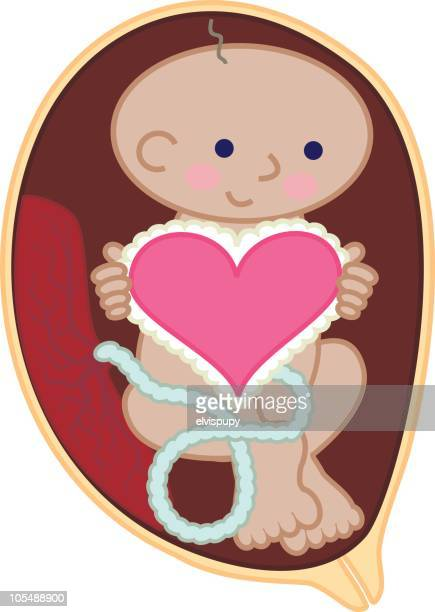 cute fetus holding heart - placenta stock illustrations, clip art, cartoons, & icons