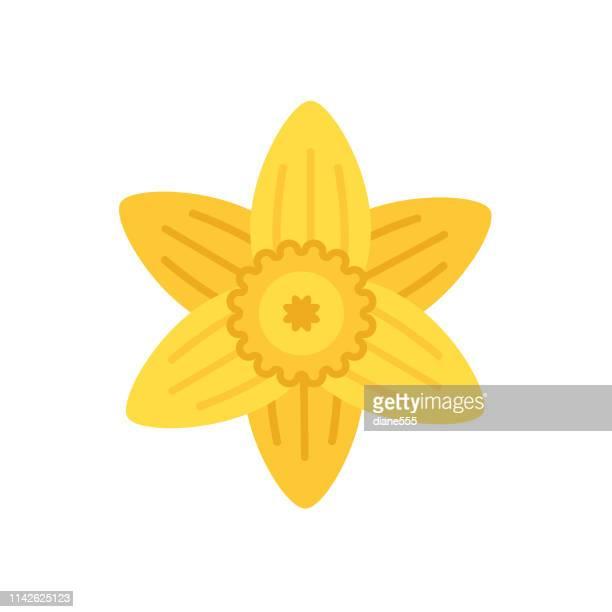 cute flower icon in flat design - daffodil - daffodil stock illustrations