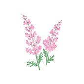 Cute Flower Icon In Flat Design - Larkspur or Delphinium