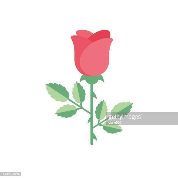 cute flower icon in flat design - rose - stem topic stock illustrations