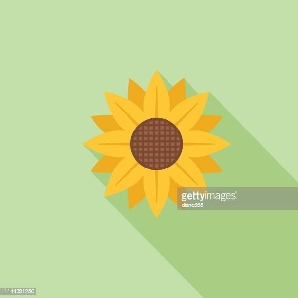cute flower icon in flat design - sunflower - sunflower stock illustrations
