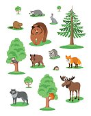 Cute forest animals kids cartoon illustration