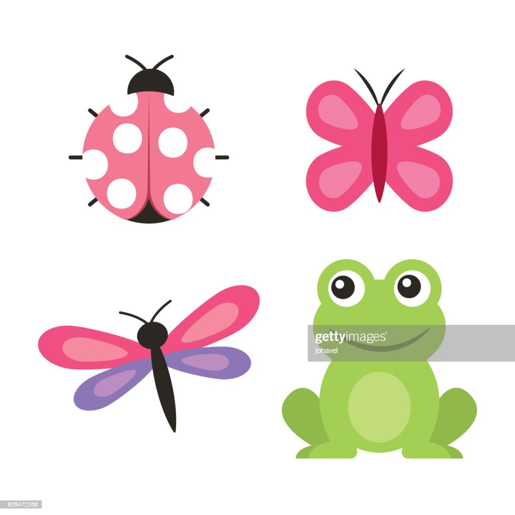 cute frog dragonfly butterfly ladybug