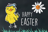 cute funny easter biddy on chalkboard with daisy