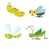 cute funny insect or bug caterpillar, fly, dragonfly and grasshopper, cartoon character