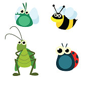 cute funny insect or bug fly, bee, grasshopper and ladybug, cartoon character