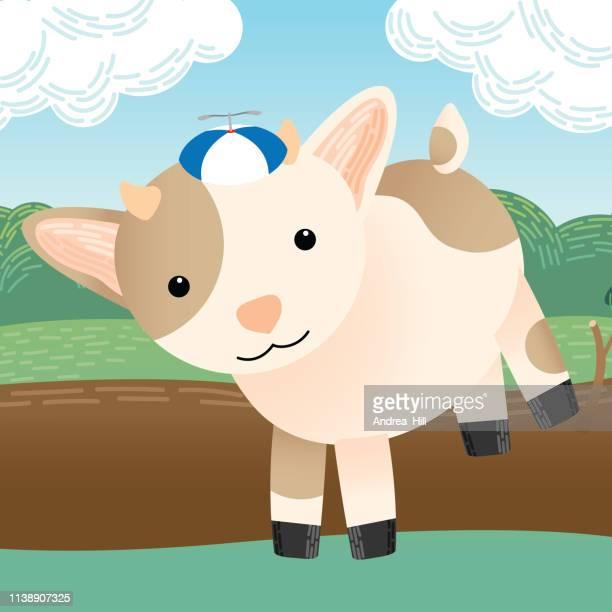 Cute Goat Runs in Pasture