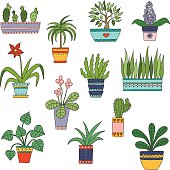 Cute hand drawn vector flowers in the pots