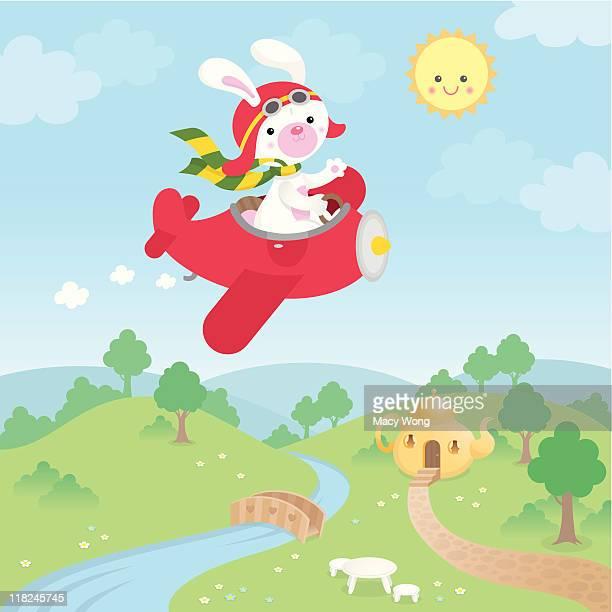 Linda kawaii bunny avión