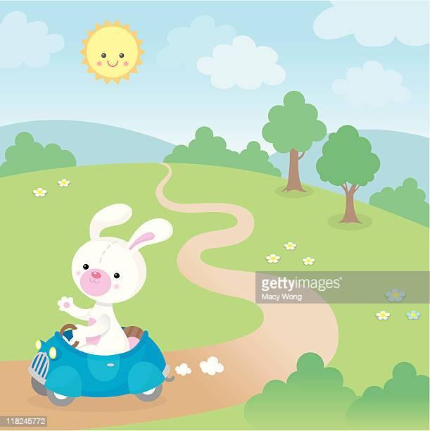 Cute kawaii bunny in fast car