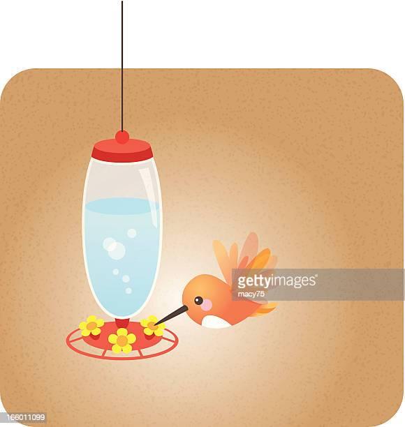 Linda kawaii colibrí alimentador