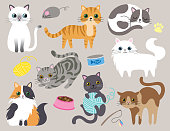Cute Kitty Cat Vector Illustration