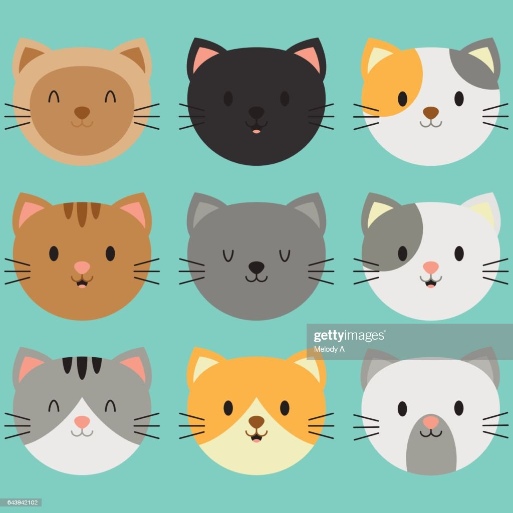 Cute Kitty Faces Smile