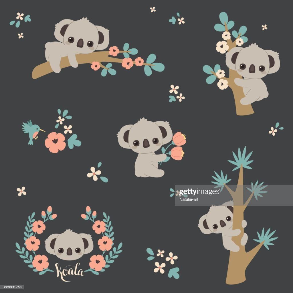Cute koala in different poses