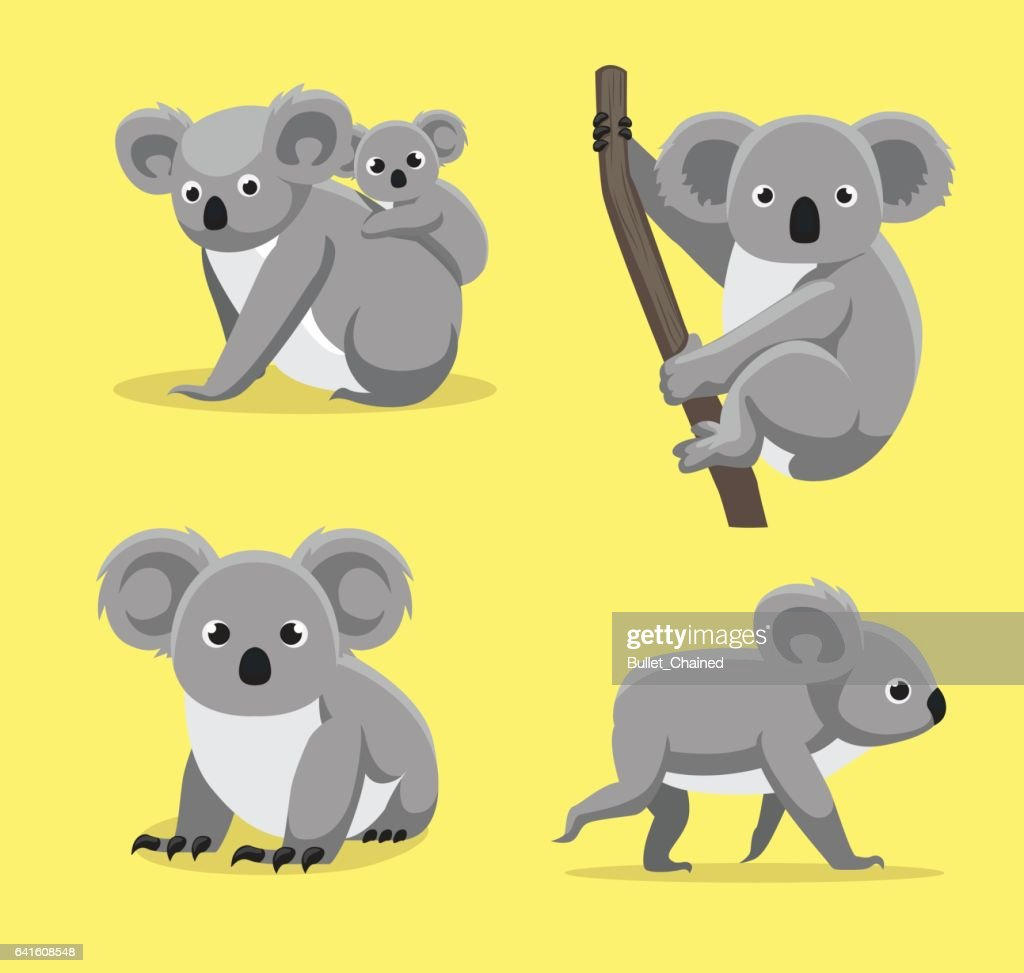 Cute Koala Poses Cartoon Vector Illustration