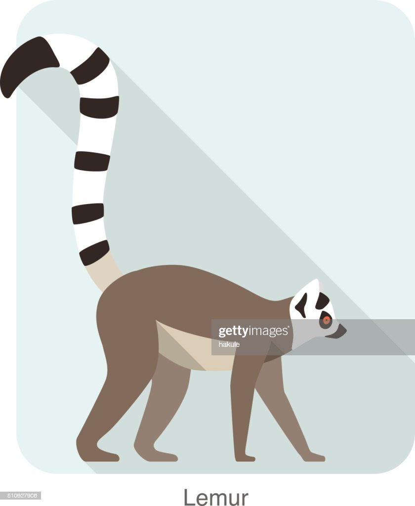 Cute lemur walking on the ground, vector : Stock Illustration