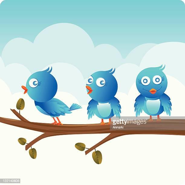 cute little birds in the sky