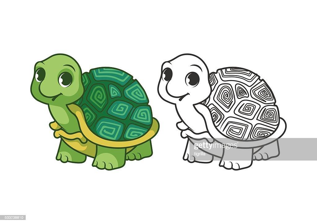 Cute little turtle.