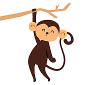Cute monkey character. Cartoon vector illustration