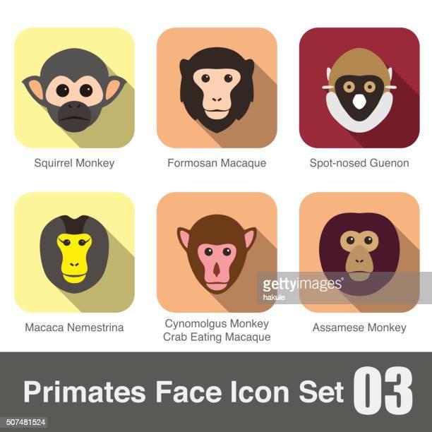 cute monkey face flat icon set - chimpanzee stock illustrations, clip art, cartoons, & icons