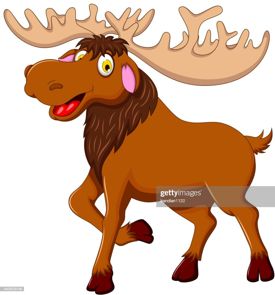 cute moose cartoon for you design