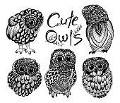Cute owls. sketch drawn by a liner on a white background