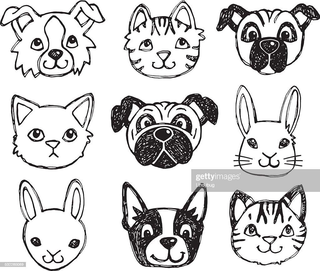 Cute pet animal faces