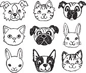Cute pet animal faces