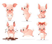Cute pig collection. Cartoon character design. Little pigs in different poses. Clean and mud. Flat vector illustration isolated on white background