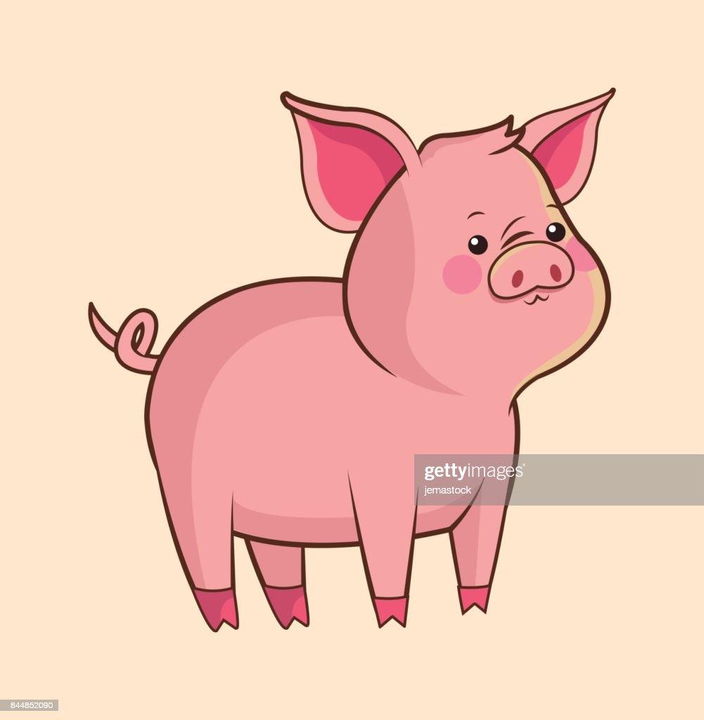 cute pig wildlife image