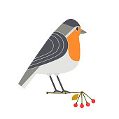 Cute robin icon