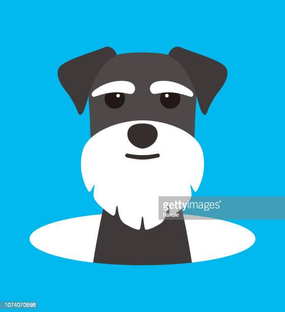 cute Schnauzer dog on the cave,watching, vector illustration