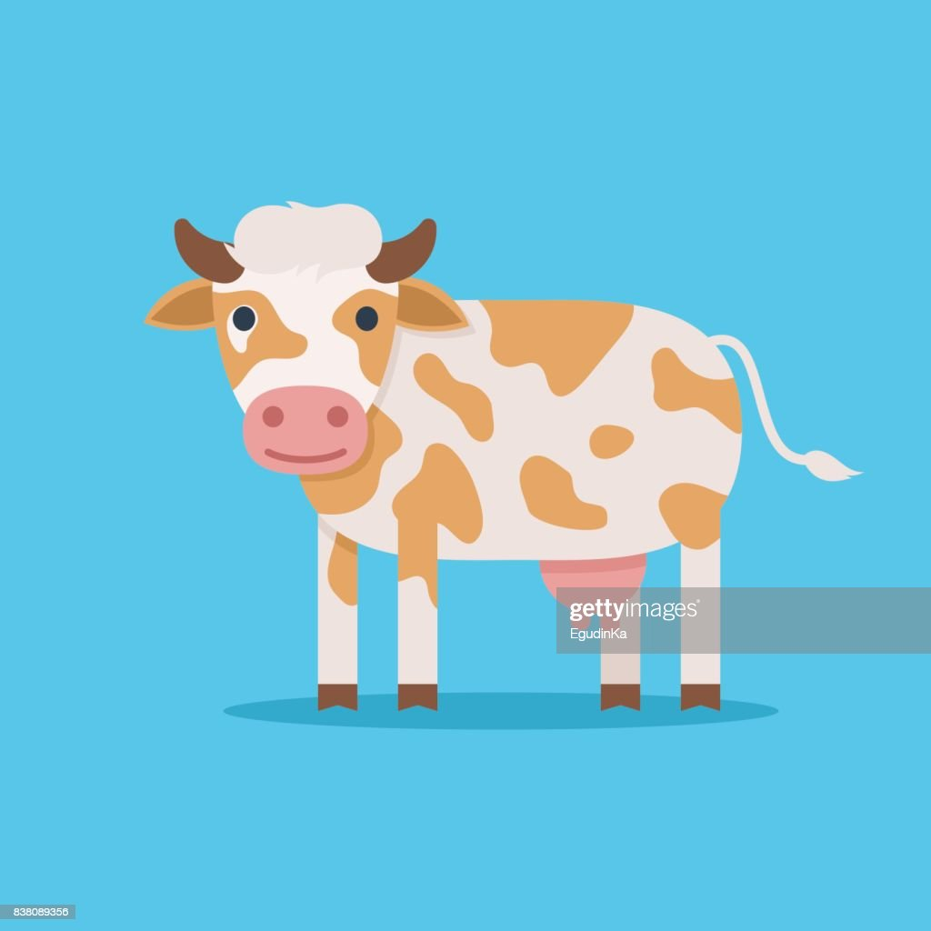 Cute spotted cow