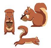 Cute Squirrel Cartoon Vector Illustration