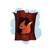 Cute squirrel sitting in hollow of tree, hollowed out old tree and animal inside vector Illustration on a white background