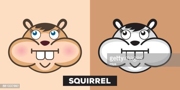 cute squirrel vector illustration - chipmunk stock illustrations