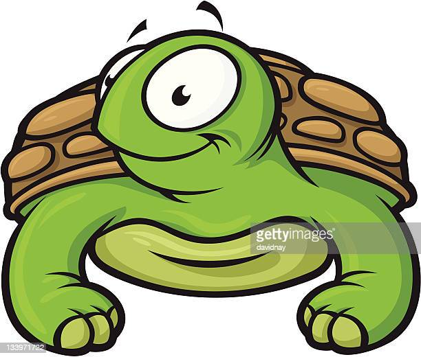 cute turtle - green turtle stock illustrations, clip art, cartoons, & icons