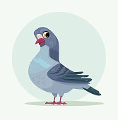 Cute urban gray blue dove character