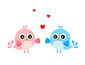 cute valentine bird couple vector