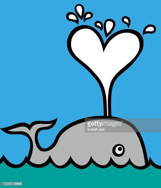 stockillustraties, clipart, cartoons en iconen met een leuke walvis die een hart van de watertuit blaast - fish love