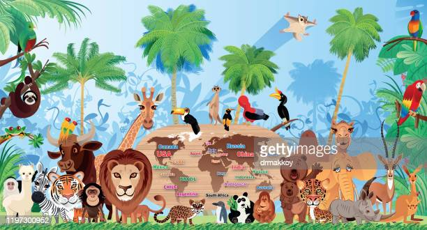 cute wild animals living in the forest - bull animal stock illustrations
