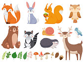 Cute woodland animals. Wild animal, forest flora and fauna elements isolated cartoon vector illustration set