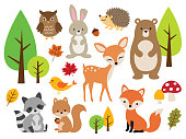 Cute Woodland Forest Animal Vector Illustration Set