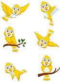 cute yellow bird cartoon collection