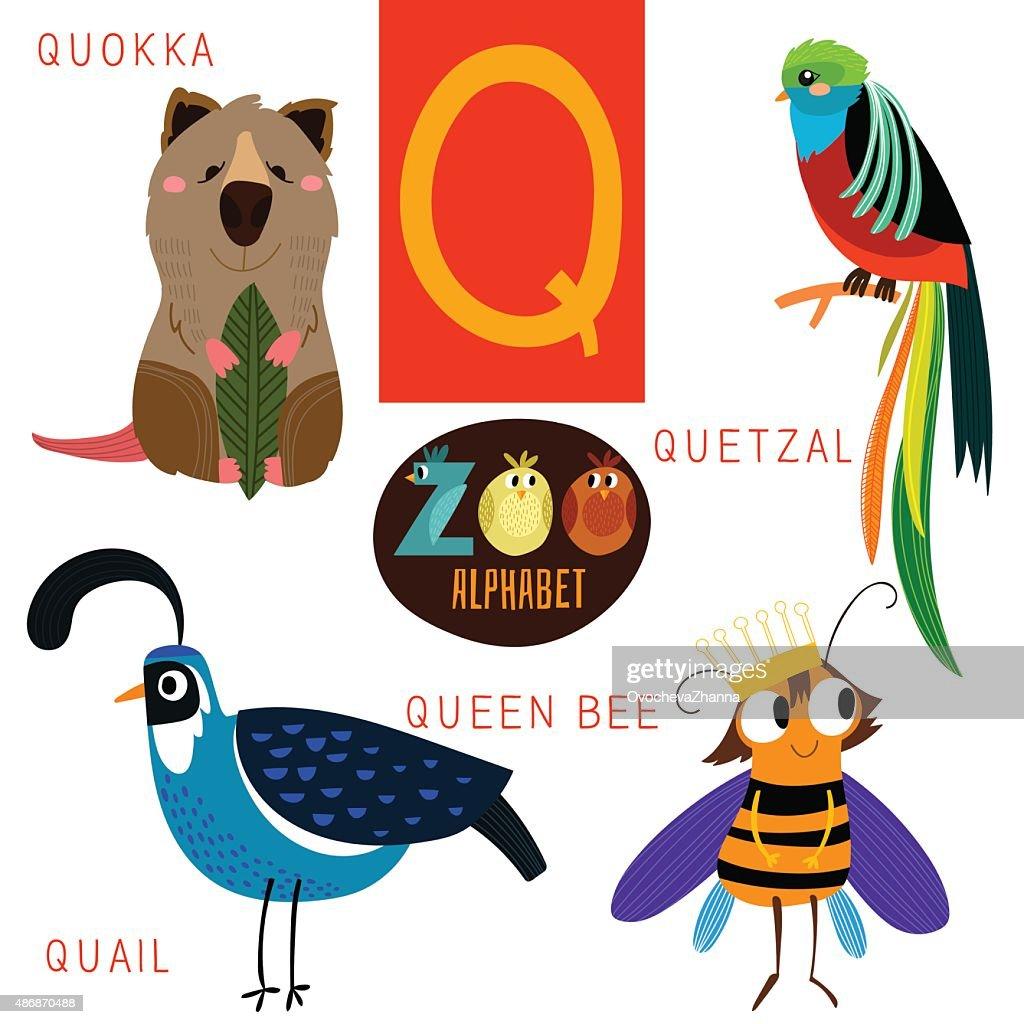 Cute zoo alphabet in vector.Q letter. Funny cartoon animals