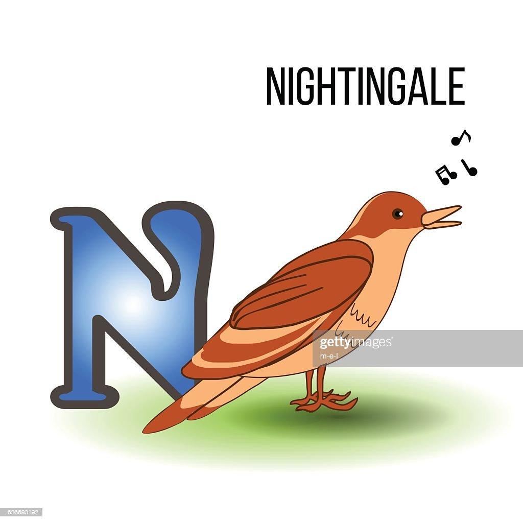 Cute Zoo alphabet N with cartoon nightingale, bird kid animal